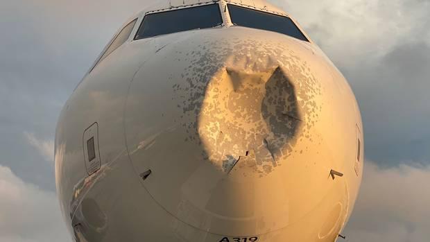 'Bird strike' causes jaw-dropping damage to passenger plane