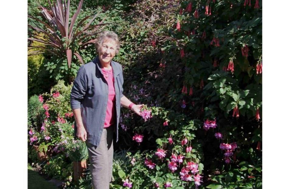 Margaret Diack, pictured below with an Enid Carter fuchsia.