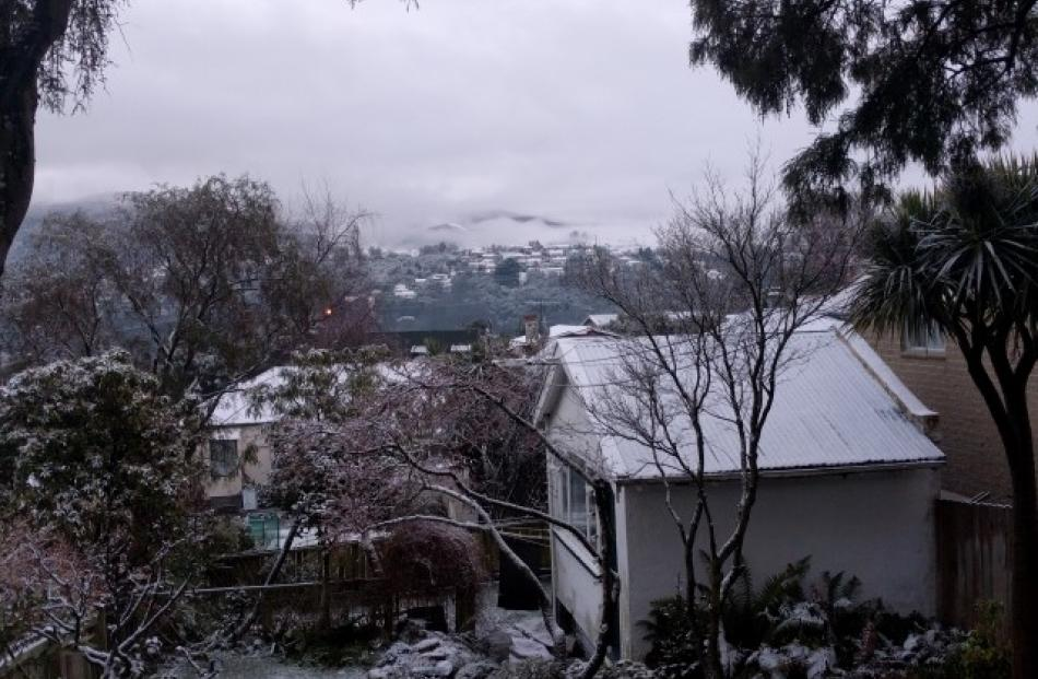 Snow in Opoho this morning. Photo Vaughan Elder
