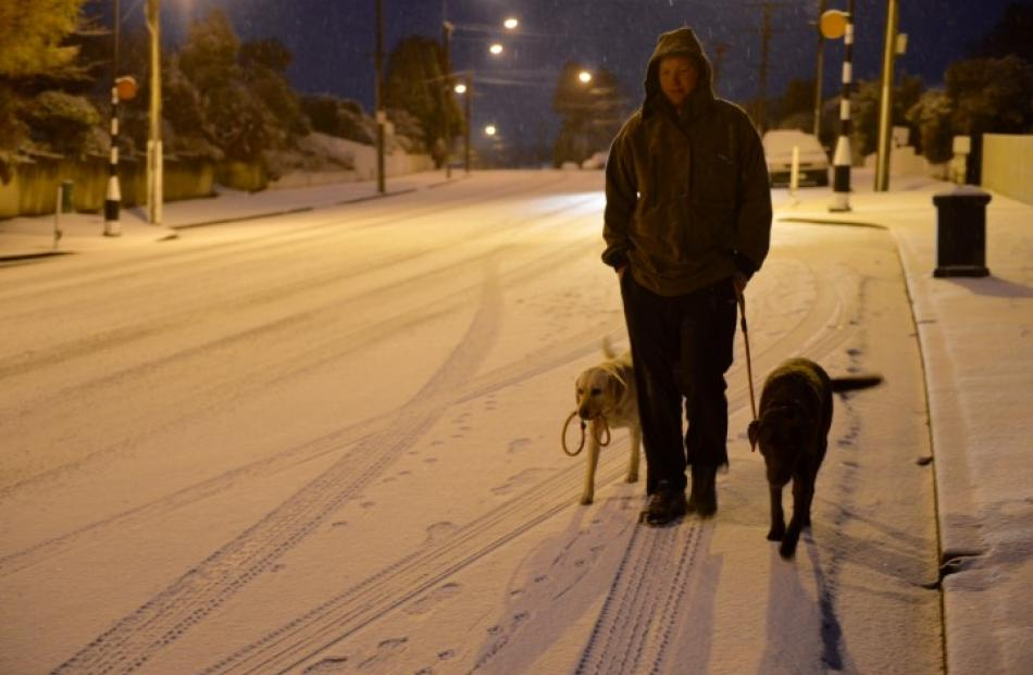 Calvin Beel walks his dogs on Taieri Rd in Dunedin this morning. Photo Stephen Jaquiery