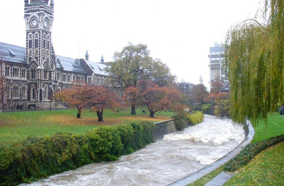 The Water of Leith running high near the University of Otago clocktower. Photo by Webfeatpix