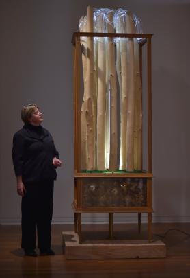 ''Undreamed Of ... 50 years of the Frances Hodgkins Fellowship'' curator Priscilla Pitts oversees the installation of recipients' work, such as this Andrew Drummond sculpture at the Dunedin Public Art Gallery.  Photo by Gregor Richardson.
