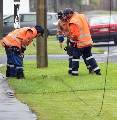 Delta workers inspect a high-voltage power line which left scorch marks on the grass when it came down in Tainui yesterday. Photos by Peter McIntosh.