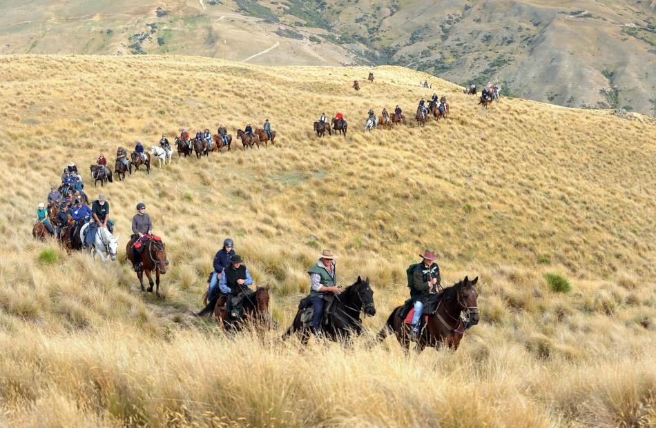The Boundary Riders trail winds up through tussock in the Cardrona Valley in 2010.