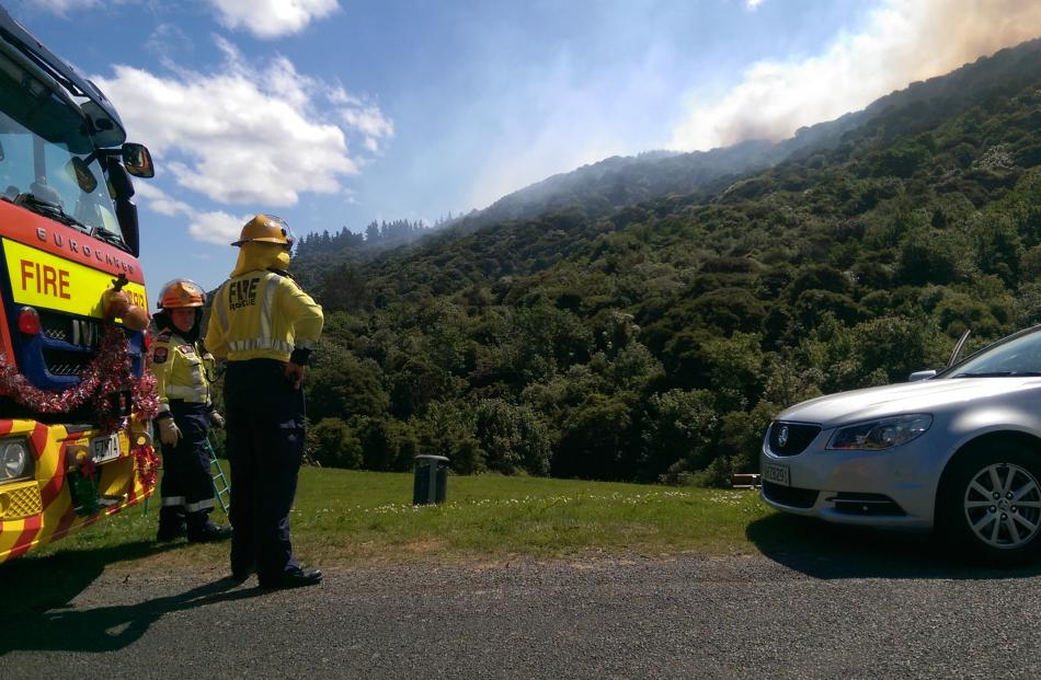 The Fire Service attending the blaze on Signal Hill. Photo: Tim Brown