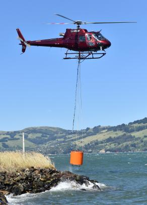 A Helicopters Otago chopper collects water from the Otago Harbour to fight the fire on Signal Hill yesterday. Photo by Peter McIntosh.