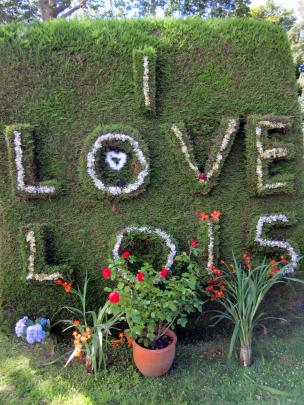 The Warrington love hedge.