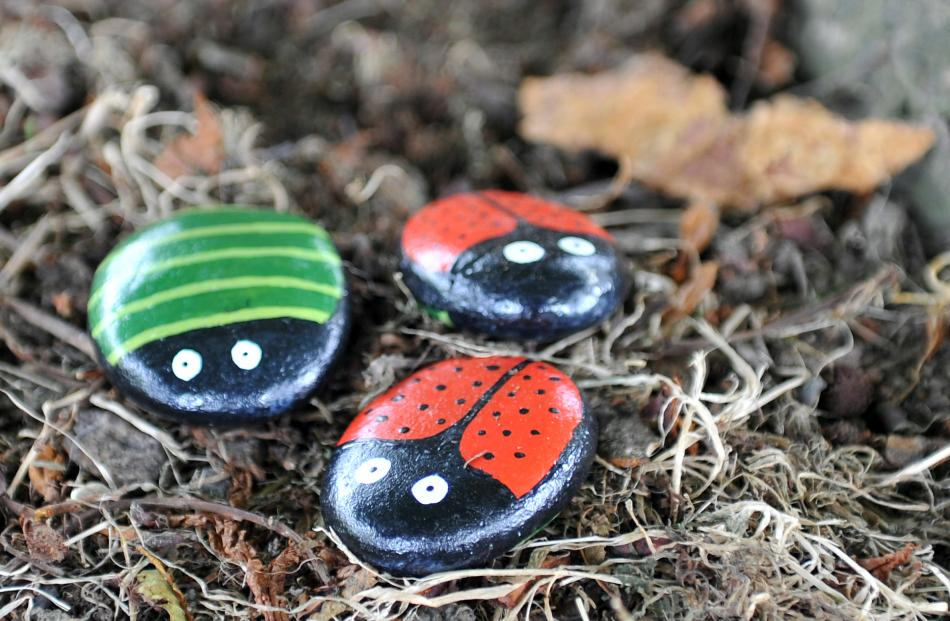 A few examples of the painted rocks.