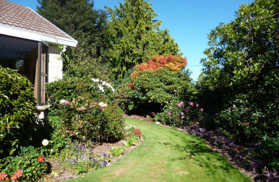 Frances Grant's autumn garden in Milton.
