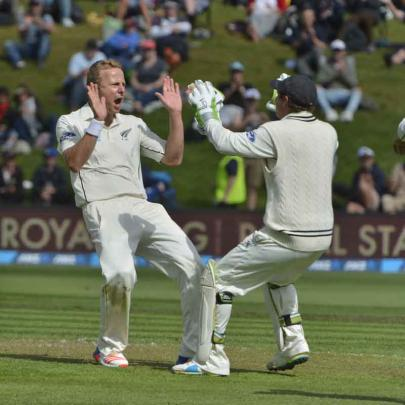 New Zealand bowler Neil Wagner celebrates a wicket with keeper 