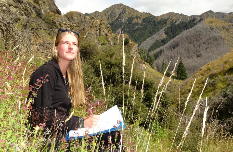 Skye Anderson takes a bird count on Coronet Peak Station in January. Photo: Guy Williams.