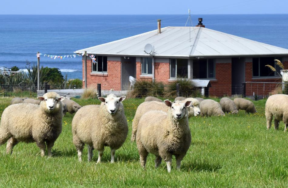 Overseas visitors are flocking to this rental cottage nestled between the farm and the sea.