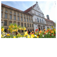 Spring In Munich