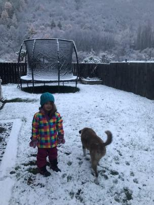 Maia Van Tuyl, 3, and her dog Nala enjoy the snow in her garden at Arrowtown. Photo: Emma McDermott