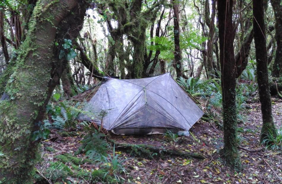 Camp in the northern Tararuas.