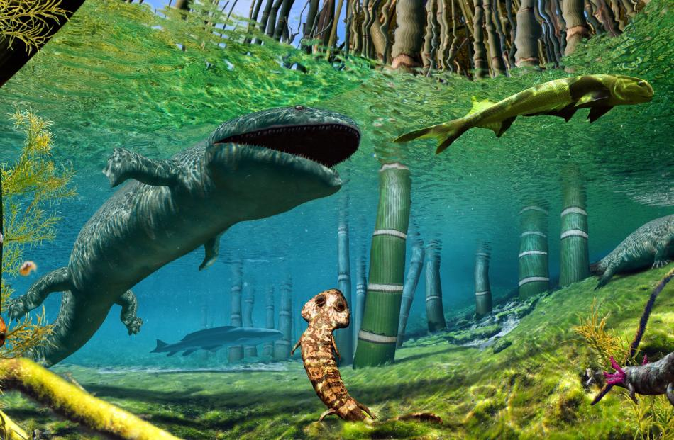 Unlike the small amphibians of today, such as frogs, toads and salamanders, Permian amphibians...