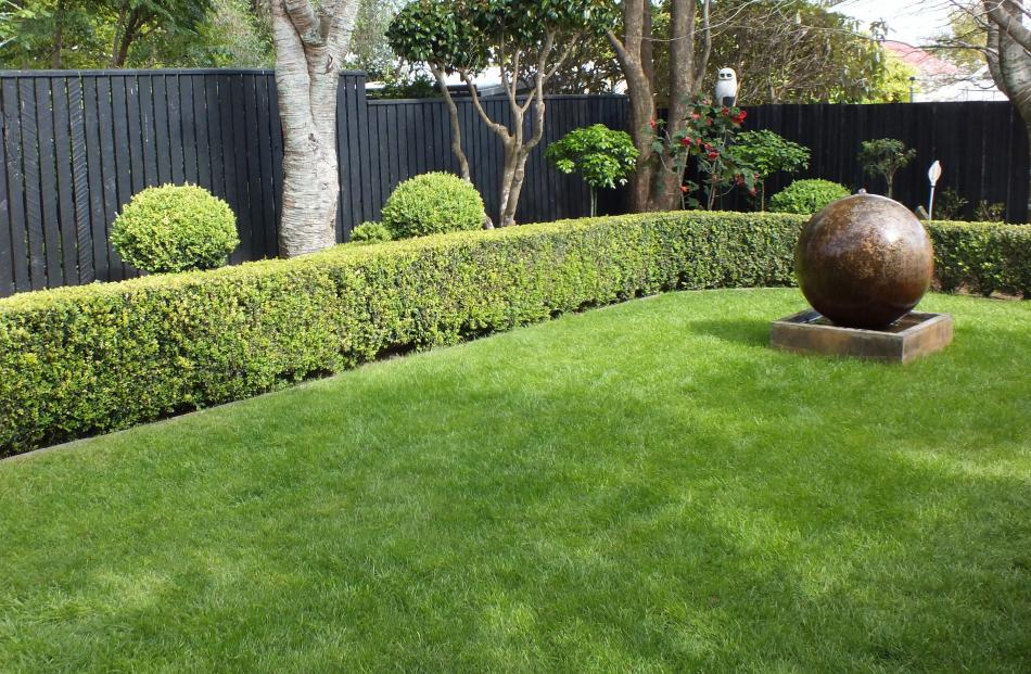 A lawn needs work to look good.
