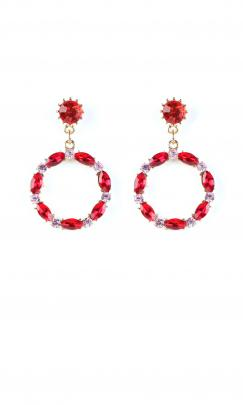 Didi drop earrings @Ruby