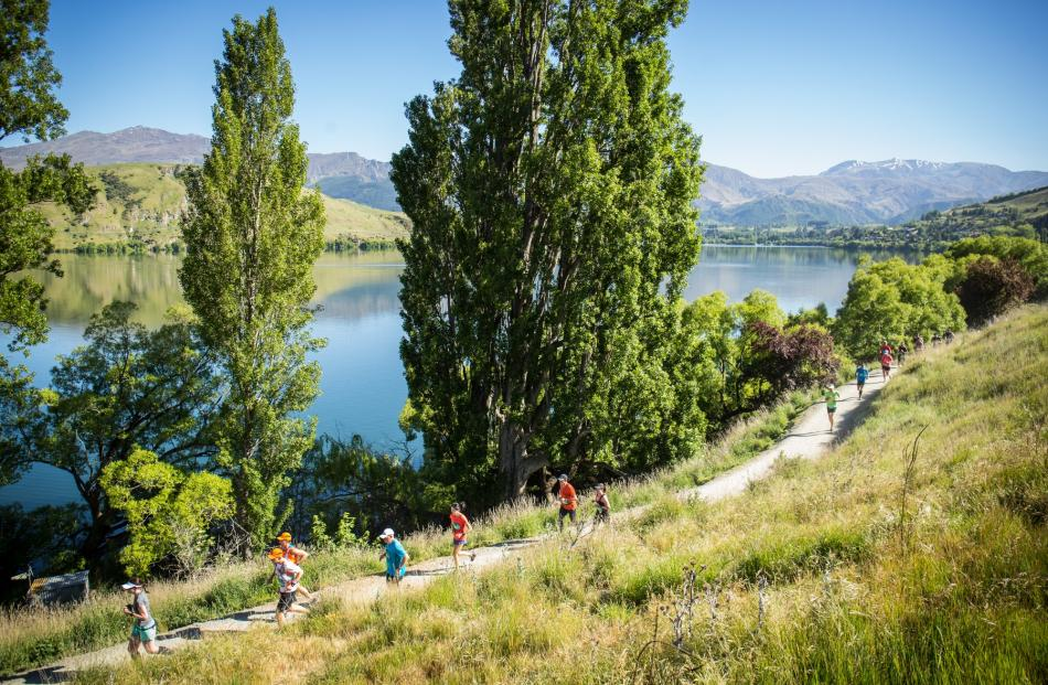 Lake Hayes was a picturesque feature of the marathon route. Photo: Tim Bardsley-Smith