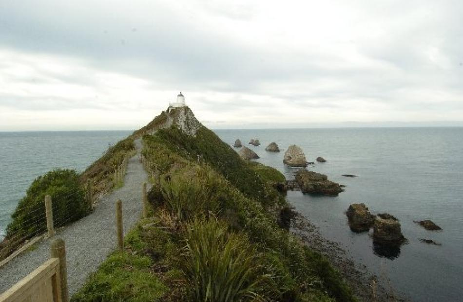 Nugget Point: This rocky outcrop features wave-eroded rocks (which are likened to the shape of...