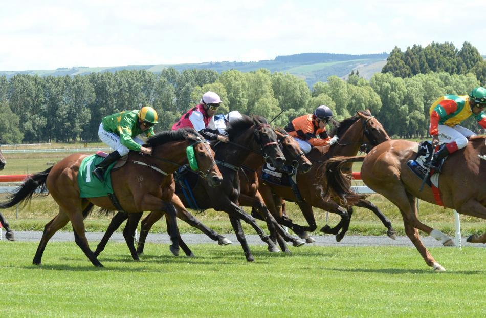 Race 3 at the Interislander Summer Festival at Wingatui Racecourse.