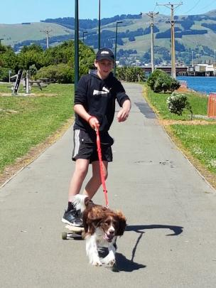 Tom O'Neill (11) on the skateboard he had just completed at Dunedin North Intermediate School, being towed by his dog, Murphy, on the harbourside walkway on Monday. Photo: Sandra O'Neill