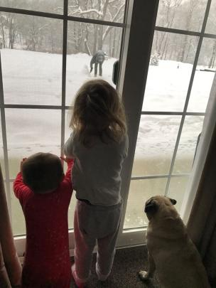 Arlo (8 months), Mila (2) and Chubby the pug watch dad Max Smith, of Dunedin, build a snowman...