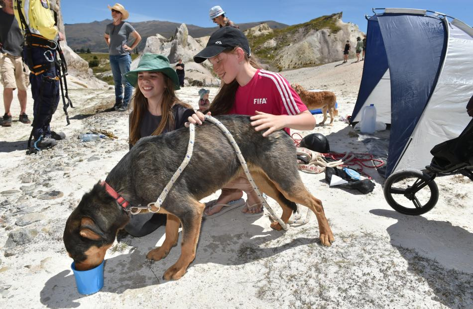 Eva De Pelsemaeker (12, right) and her friend Annika MacNab (11), both of Dunedin, celebrate the safe rescue of Eva's family dog Bowie after he was stranded on a ledge in St Bathans for almost 18 hours. Photos: Gregor Richardson