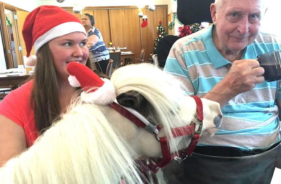 Tanisha Pyne (17), of Balclutha,  with her 78cm Medicine Hat miniature horse ''Snowy'' and Ervie...