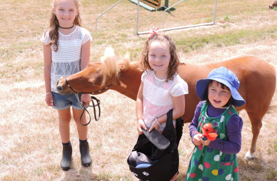 Miniature horse Chippie (12) is just the right size for Oamaru handlers Meika (7, left) and Cleo Millns (5), to the delight of onlooker Saoirse Jackson, of Dunedin.