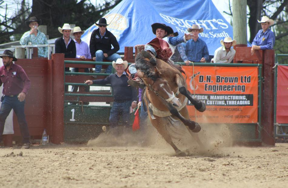 Adam Williams, of Raikaia, rides his way to first place in the open bareback at the Southland Rodeo.