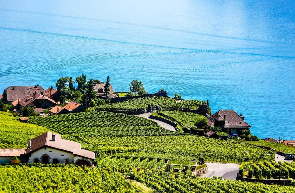 Viewing Unesco protected vineyards.