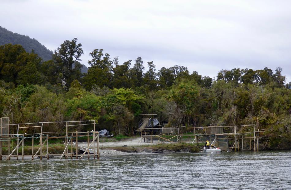We zipped past  whitebait stands  as we cruised down the river.