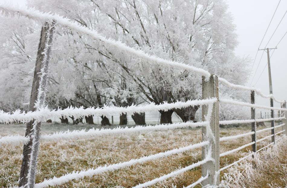 A farm near Poolburn suffers from a heavy hoar frost.Photo: Tom Kitchin