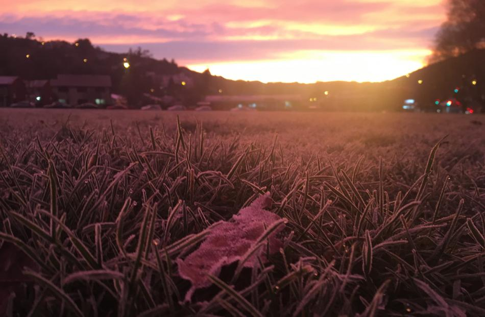 The sun rises over a frosty Gardens sports field. Photo: Gerard O'Brien