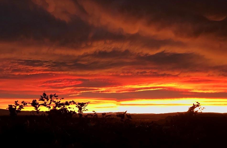 The sunrise over Alexandra. Photo: Joy Bennett
