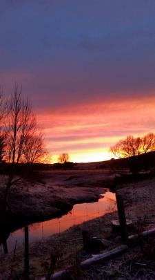 The sunrise reflects in this frost rural scene near Palmerston. Photo: Gemma Fairbairn
