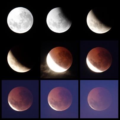 Sequence of lunar eclipse from Saddle Hill. Photo: Izumi Schmidt