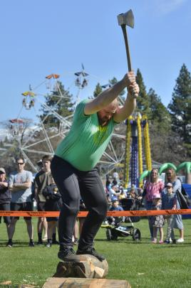 Champion axeman Bobby Dowling of Invercargill demonstrates his underhand prowess.
