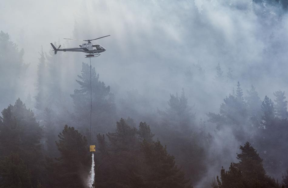 Smoke smothers the trees as a fire burns at Lake Hawea. Photo: Andy Cole