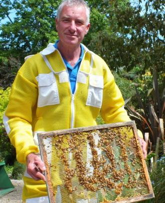 Murray Rixon says his yellow suit is more bee-friendly that the traditional white.