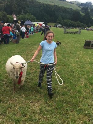 Millie Vogan (11), of Dunsandel, leads her pet sheep, Tag, in the grand parade at the Duvauchelle...