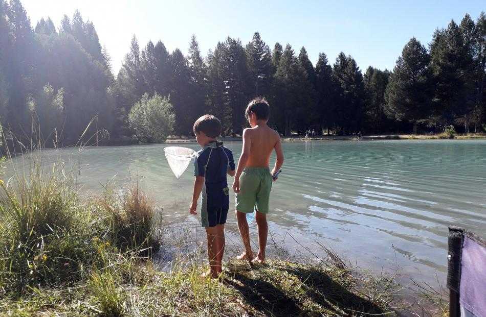 Catching dragonflies at Lake Ruataniwha, Twizel, are Felix (4, left) and Victor (8) Rivollet....