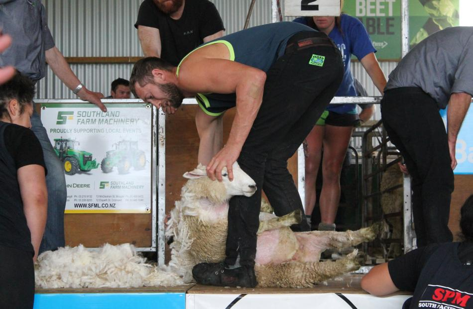 Brook Todd in action during the shearing competition.