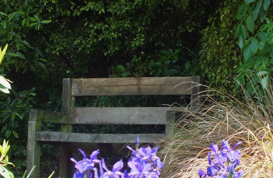 A rustic bench in a cool corner. Photos: Gillian Vine