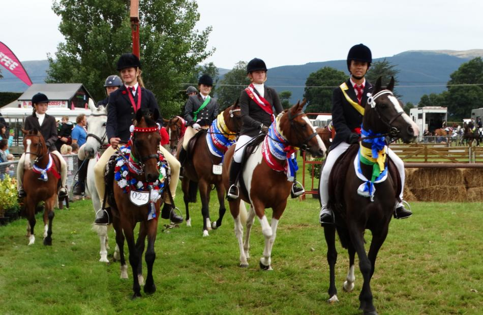 Weighed down with ribbons and prizes, riders, ponies and horses take part in the grand parade at...