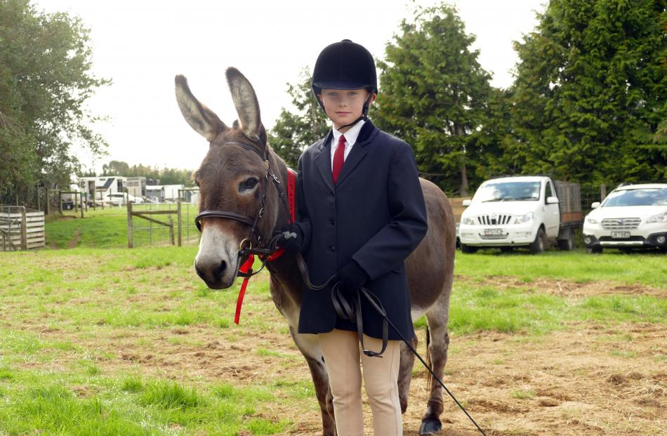 The winners of the best-presented donkey and handler class were Fernlea Dylan held by Ben O...
