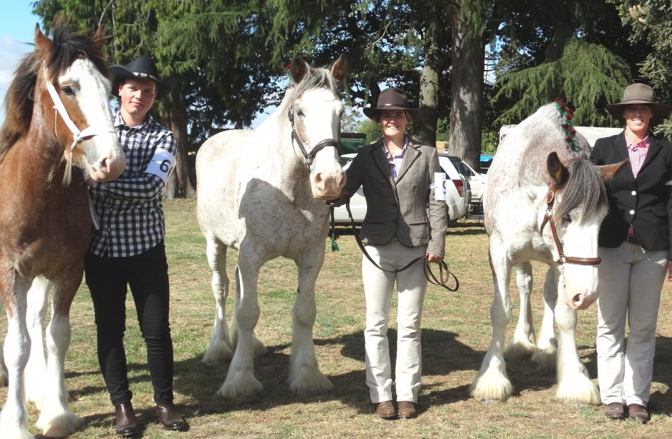 Contesting the Clydesdale competition were (from left) Sheldon Mehrtens, of Timaru, Cate Smith...