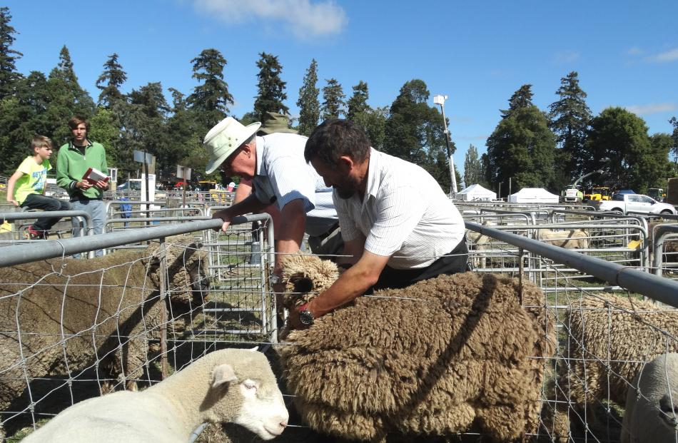 Trevor McCall (left), of Gore, evaluates one of the sheep entries with the help of Ken Davis-Smith.