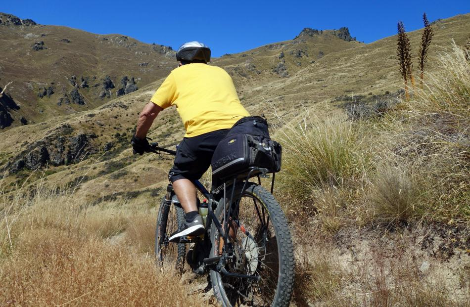 Norm Sinclair, of Dunedin, starts the huge descent of the Grandview Doc track.